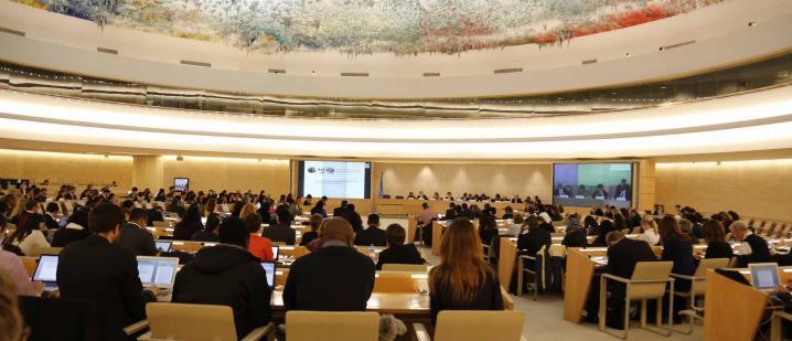 صورة من موقع مجلس حقوق الإنسان بجنيف